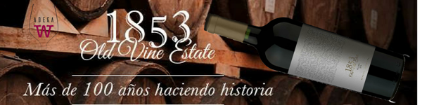 Barra do 1853 Old wine estates Malbec (Copy) (2)